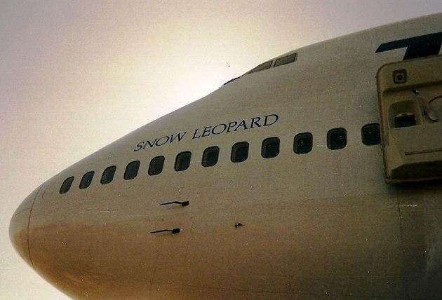 Snow Leopard lettering